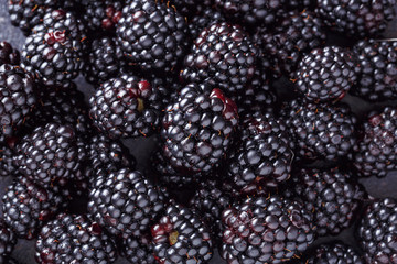 close up fresh blackberry on dark background.