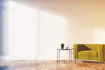 Minimalistic living room, green armchair toned