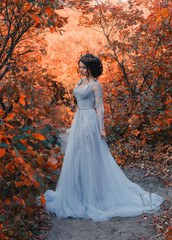 A young princess walks in a beautiful silver dress. The background is bright, golden autumn nature. Artistic Photography