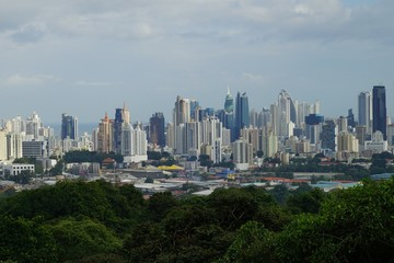 A view of Panama City Skyline with a forested area in the foreground