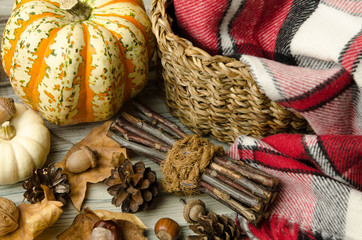 Thanksgiving decoration. Autumn decoration. Autumn still life with colorful pumpkins, fall foliage, acorns. Happy Halloween. Autumn background