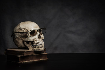 skull on the table , still life