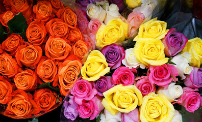 Close up on bouquets of colorful roses
