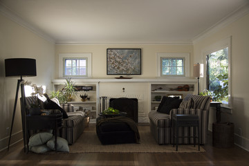 Bright, Sunlit, Cozy Staged Living Room Vintage Built-In Bookcase, Fireplace, Hardwood Floor, Front On View, Daytime
