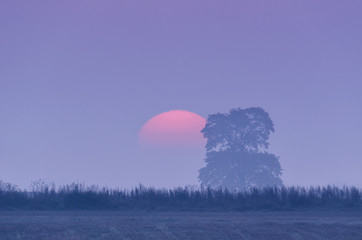 SUNRISE - The sun and mist in morning