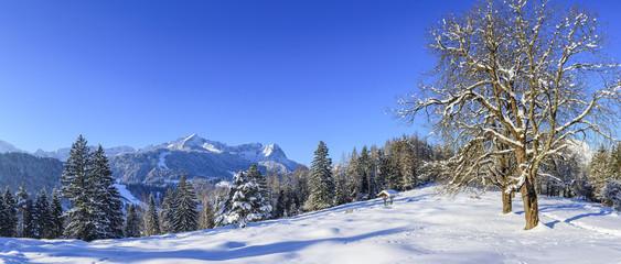 Wall Mural - winterliche Landschaft nahe Garmisch-Partenkirchen