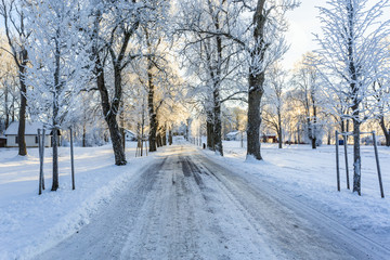 Slippery winter road through a tree avenue