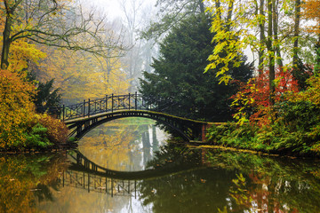 Scenic view of misty autumn landscape with beautiful old bridge in the garden with red maple...
