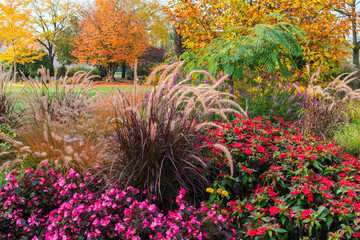A piece of garden in autumn