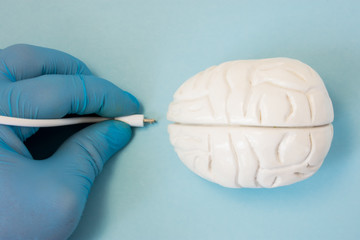 Brain and plug concept photo. 3D figure of human brain is next to hand of scientist or doctor in glove, which keeps plug connector to be inserted into organ for diagnostic or download information data