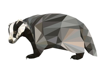 picture polygon shape badger