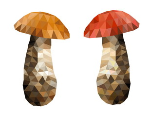 polygon picture two boletus mushroom
