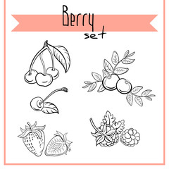 Berry Set 1