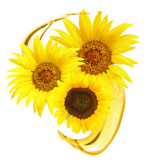 Sunflowers and cooking oil splashes on white background