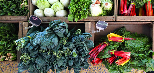 Vegetables on sale at the farmer's market