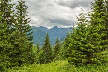 Scenic Tatra Mountains Place
