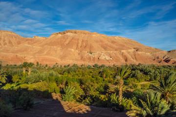 Morocco Ouarzazate mountain palms