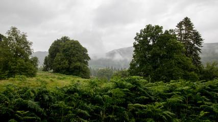 Regnerische Landschaft