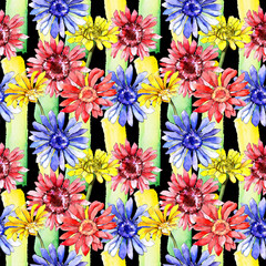 Wildflower gerbera flower pattern in a watercolor style. Full name of the plant: gerbera. Aquarelle wild flower for background, texture, wrapper pattern, frame or border.