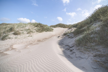 Sand dune shaped by the wind