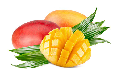 mangoes isolated on a white background