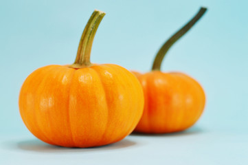 pumpkins in blue background