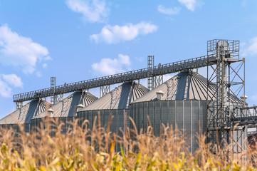 Agricultural storage silos. Rural scene.