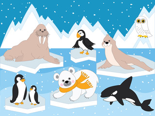 Vector Set of Arctic Animals and Birds
