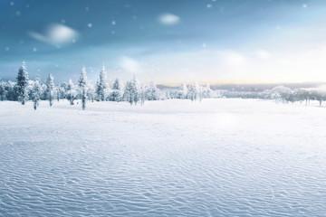 Landscape of snowy field with frozen trees