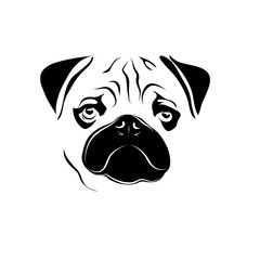 pug face. vector animal logo