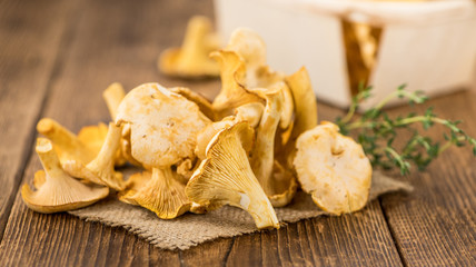 Chanterelles (freshly harvested)
