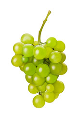 Ripe bunch green grape