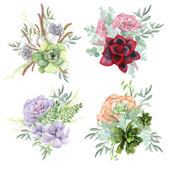 A set of watercolor compositions made of succulent flowers.