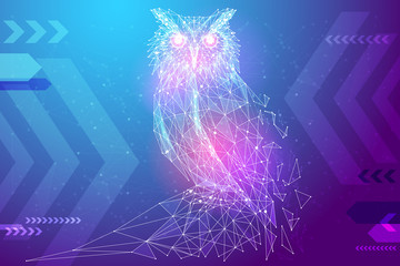 Photo Stands Owls cartoon Abstract image owl bird in the form of a starry sky or space, consisting of points, lines, and shapes in the form of planets, stars and the universe. Education vector wireframe concept. Blue purple