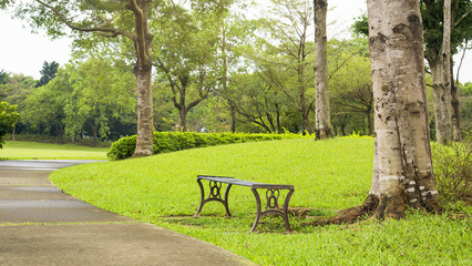 Scenery with bench in the park.
