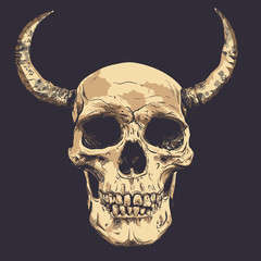 Human Skull with horns Vector Art. Hand drawn.