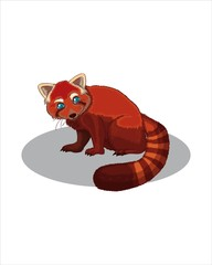 Adult red Panda - vector drawing - isolate white background