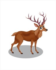 Cute Deer with big eyes - vector drawing - isolate white background