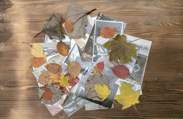 Vintage retro photos of peoples with no faces in autumn foliage on wooden desk table background. Nostalgia.