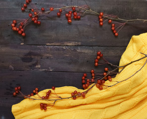 Autumn background boards with dark brown branches with small apples,and a yellow sweater