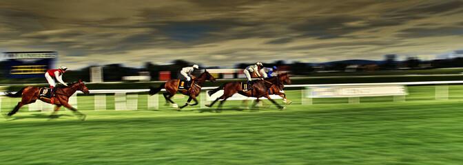 Pferderennen Gallopprennen