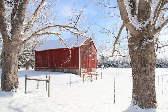 Red Barn in Winter