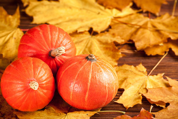 Autumn horizontal banner with yellow leaves, orange pumpkins on a wooden textured backdrop.