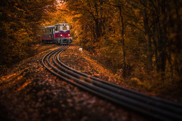 Budapest, Hungary - Beautiful autumn forest with foliage and old colorful train on the track in Hungarian woods Wall mural