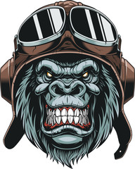Monkey in helmet pilot