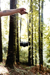 Hand with camera in forest