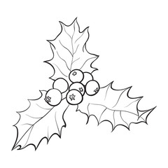 Mistletoe black and white branch with leaves and berries, holly berry Christmas decoration element, sketch vector illustration on white background.