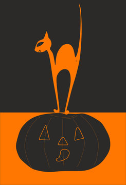 Black cat vampire and pumpkin for halloween on a black and orange background. Vector.
