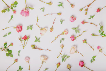 Festive flowers rose composition on the white background. Overhead view. Copy space. Birthday, Mother's, Valentines, Women's, Wedding Day concept.