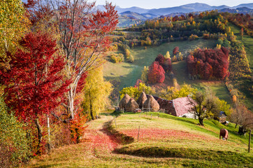 Autumn landscape. Colorful fall scene in a mountain village.